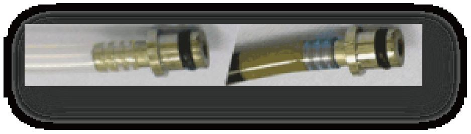 管内のバイオフィルム