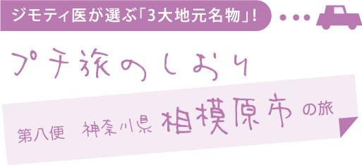 ジモティ医が選ぶ「3大地元名物」!プチ旅のしおり 第八便 神奈川県相模原市